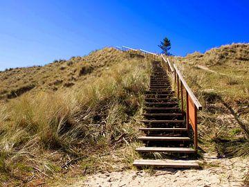 Duin met trap, Terschelling van Rinke Velds