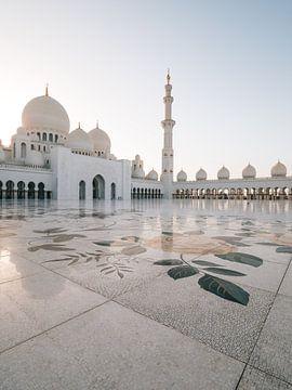 Scheich Zayed-Moschee (Abu Dhabi) am Abend / Goldene Stunde