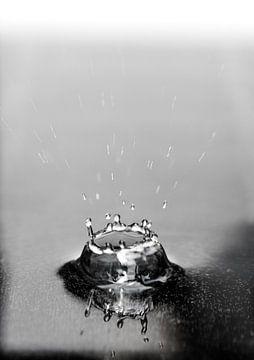 Macrofoto van een vallende druppel in water in zwart wit van Thomas Poots