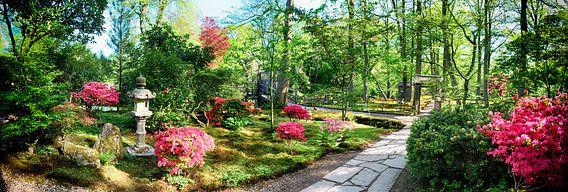 nature background panorama van Ariadna de Raadt