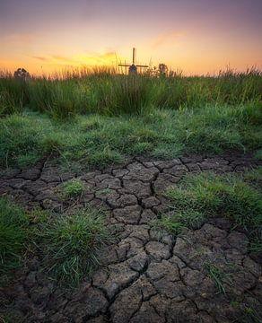 Molen in landschap tijdens zonsopkomst van Tomas van der Weijden