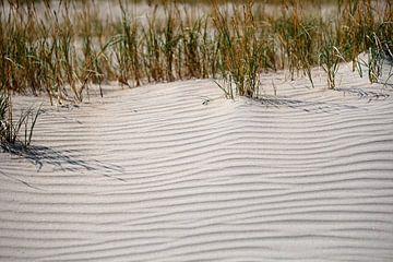 Sanddüne mit Gras von Ines Thun