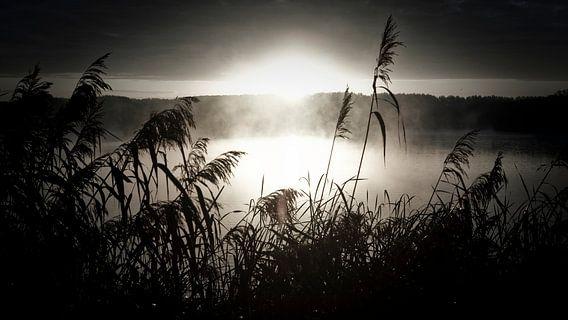 ochtendnevel over het meer