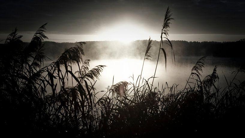 ochtendnevel over het meer van Jonas Demeulemeester