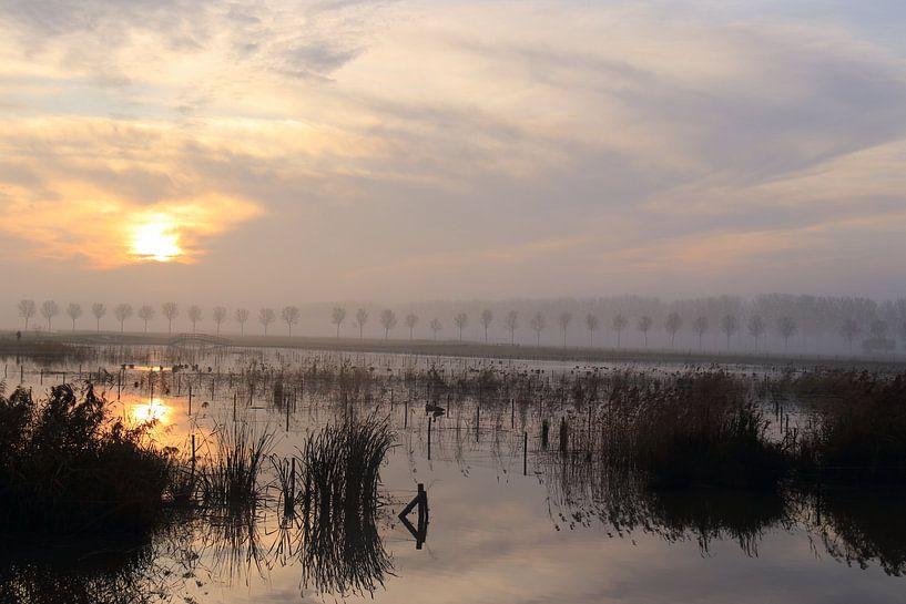 Landschap met zonsopkomst bij park Lingezegen Arnhem Elst van Bobsphotography