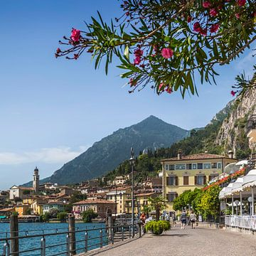 GARDASEE Idyllische Uferpromenade in Limone sul Garda  van