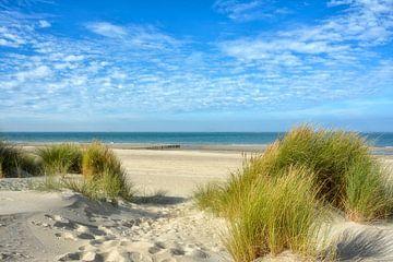 Nordseestrand Holland von Joachim G. Pinkawa
