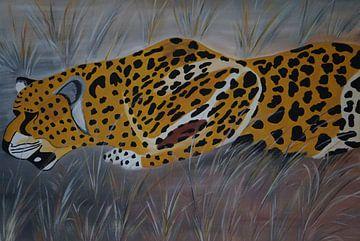 Gepard auf der Jagd I von Babetts Bildergalerie