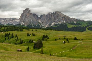 Dark clouds on the Alpe di Siusi sur Michael Valjak