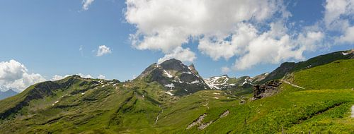 Sommer auf der Grindelwald First Wanderweg  in den Berner Alpen in der Schweiz.