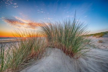 Coucher de soleil depuis la dune sur
