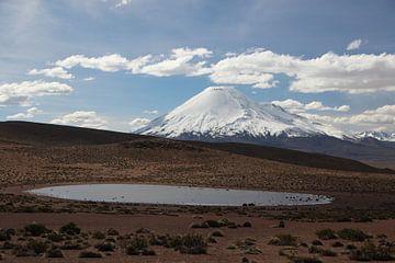 Uitzicht op vulkaan in Altiplano in Bolivia. Op de voorgrond een bergmeertje. van A. Hendriks