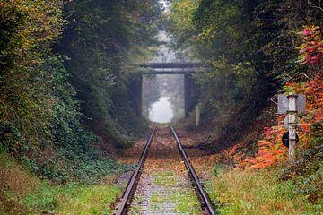 tunnel in de natuur van Marcel Derweduwen