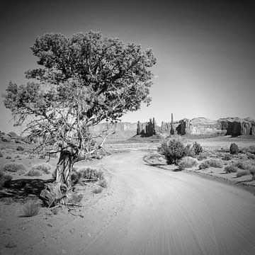 Monument Valley Drive en totempaal z/w van