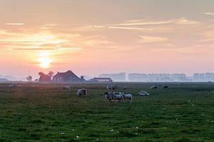 Groningen / Zonsondergang boven de weilanden rondom Dorkwerd / 2014