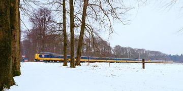 Le train dans le paysage néerlandais:  De Steeg sur John Verbruggen