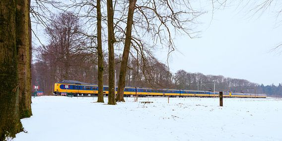 De trein in het Nederlandse landschap: De Steeg