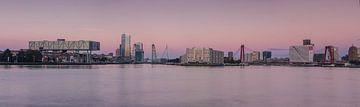 Rotterdam panorama von Ilya Korzelius
