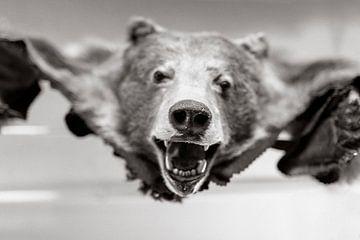 Bärenfell in schwarz und weiß von Atelier Liesjes