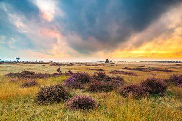 Zonsondergang op de veluwe van Sander Meertins