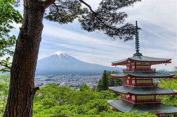 Temple avec mt. Fuji - Japon