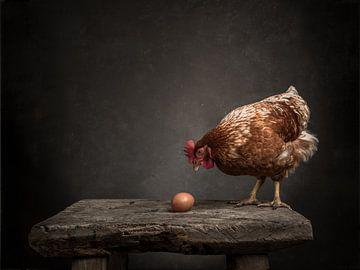 Das Huhn und das Ei - Serie - 2/3 von Mariska Vereijken
