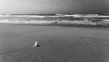 Eenzaam van Rob Bruijn