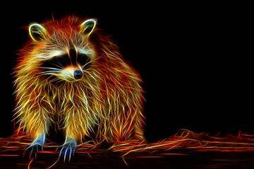 Wasbeer-Vlammende gloed von Leo Huijzer