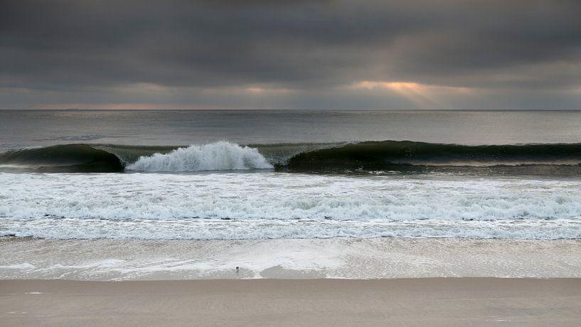 Waves 4 van Wad of Wonders