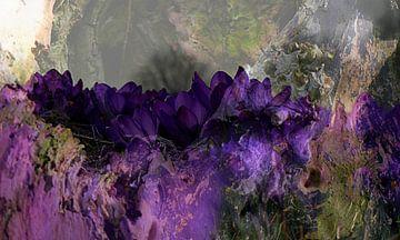 Printemps violet sur Anita Snik-Broeken