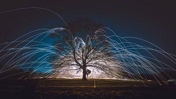 Feuerwerk aus brennender Stahlwolle in einem kahlen Baum von Fotografiecor .nl