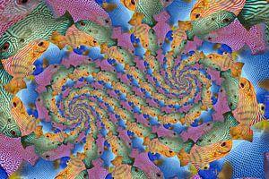 Dubbele Spiraal van Kwartet Vissen