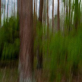 Lijnen in het bos door digitale kunst van JM de Jong-Jansen