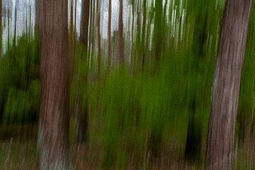Lijnen in het bos door digitale kunst