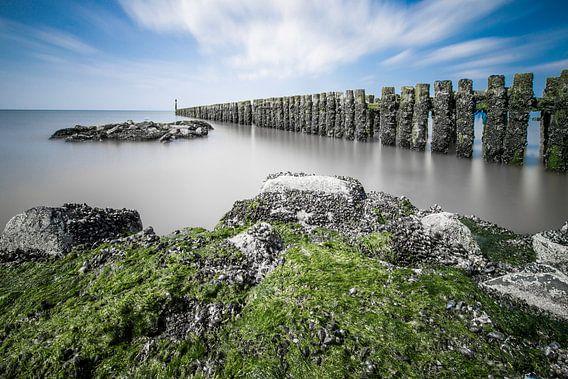 Zachte zee van Inge Wiedijk