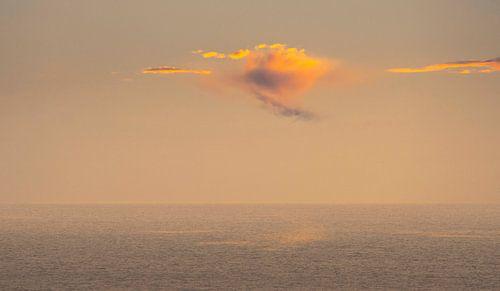 2722 Orange Cloud