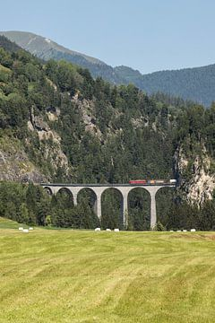 Rood treintje over brug in Zwitserland van Sasja van der Grinten