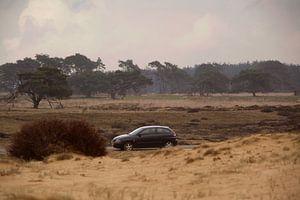 Auto auf der Veluwe von Capfield Photography