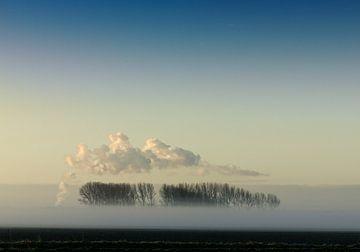 Landschaft mit Nebel, Bäumen und Wolken. von Sky Pictures Fotografie