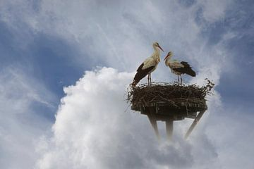 ooievaars in de wolken von Yvonne Blokland