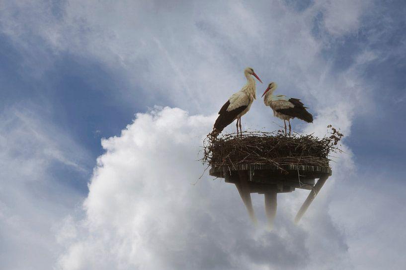 ooievaars in de wolken van Yvonne Blokland