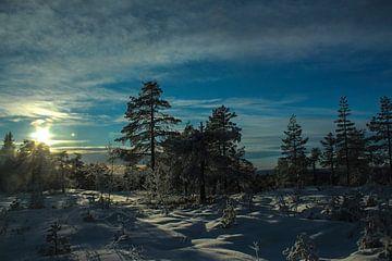 Winters Zweden van By Foto Joukje
