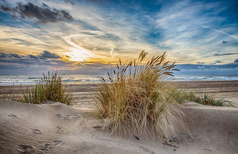 September Sunset 2018 von Alex Hiemstra