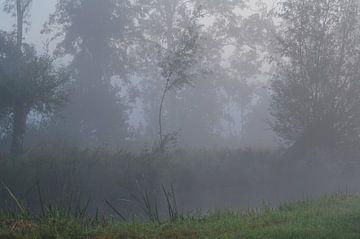 Neblige Landschaft von Leo Huijzer