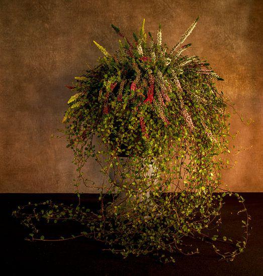 waterval van bloemen in een hoge pot