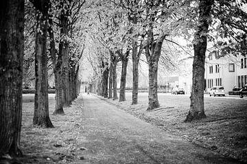 Voormalige oprijlaan naar het Gravenshof in Amby (Maastricht)