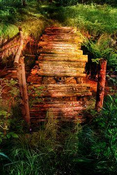 Alte Brücke van Claudia Evans
