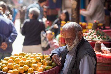 De oude man verkoop citroenen, manden vol van Ton Tolboom