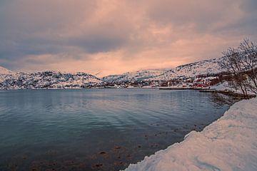 Fjord Noorwegen van PhotoJoy