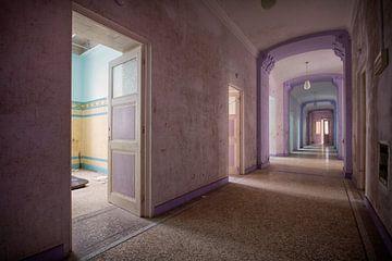 Urbex: Alla Italia ( oud badhuis) van Carola Schellekens